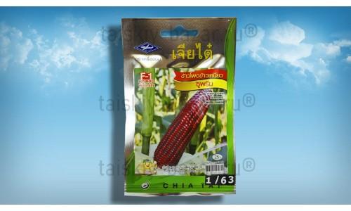 Семена фиолетовой восковой кукурузы